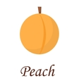 peach isolated vector image
