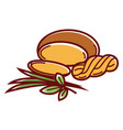 suluguni cheese round and in pigtail with leek and vector image vector image