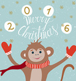 Monkey year card vector image