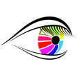colorful eye icon isolated vector image