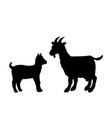 goat goatling farm mammal black silhouette animal vector image vector image