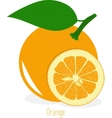 Orange slices collection of vector image
