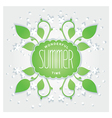 Summer is wonderful time vector image vector image