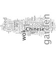 a beginners guide to chinese cookery vector image vector image
