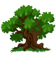 a deciduous oak tree with green leaves and fresh vector image