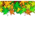 background with colorful autumn leaves vector image vector image