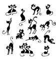 black cats vector image