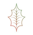 christmas decoration leaf holly natural vector image vector image