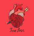 composition with a pierced heart vector image