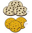 Cookies vector image vector image