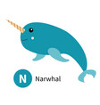 letter n narwhal zoo animal alphabet english abc vector image vector image
