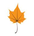 orange maple leaf isolated on white background vector image vector image