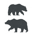 two bears silhouettes vector image