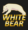 polar white bear logo design vector image