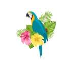 Parrot Ara Colorful Exotic Flowers Blossom and vector image