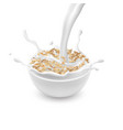 bowl with oat flakes and pouring milk vector image