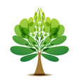 decorative tree logo vector image vector image