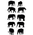 set of black elephants vector image