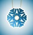Snowflake tag vector image vector image