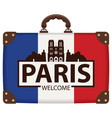travel suitcase with french flag and notre dame vector image