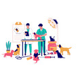 veterinary clinic services flat style vector image vector image
