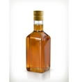 Whiskey in the bottle icon vector image vector image