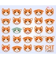 cat faces emoticon vector image