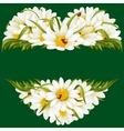 chamomile frame in shape heart vector image vector image