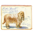 Cocker Spaniel - An hand painted vector image vector image