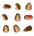 cute hedgehogs in different poses set isolated on vector image
