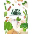 herbs vegetables plant based tofu milk organic