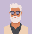 hipster man with white beard vector image vector image