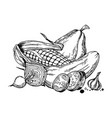 still life vegetable engraving vector image vector image