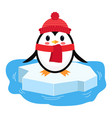 cartoon penguin on ice chunk vector image vector image