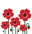 red poppy flowers isolated on white - retro vector image vector image