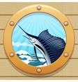sail fish vector image vector image