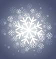 shiny christmas snowflakes vector image vector image