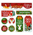 christmas winter holiday sale tag and labels vector image