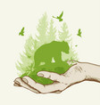 green tree and bear in the hand vector image
