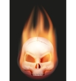 Human skull head with flame vector image vector image