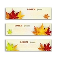 Set of three banners with colorful autumn vector image vector image