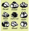 set symbols patterns different seeds nuts vector image