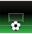 soccer ball on field with vector image