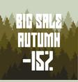 big autumn sale discount 15 percent vector image vector image