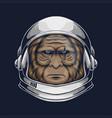 bigfoot astronaut vector image vector image