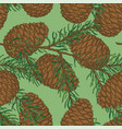 seamless pattern with pine cone and fir branch vector image