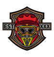 skull motocross helmet logo vector image