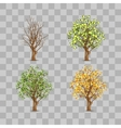Isolated set of trees in different seasons vector image
