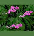 jungle green leaves of tropical palms monstera vector image vector image