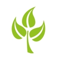 leaves plant isolated icon design vector image vector image